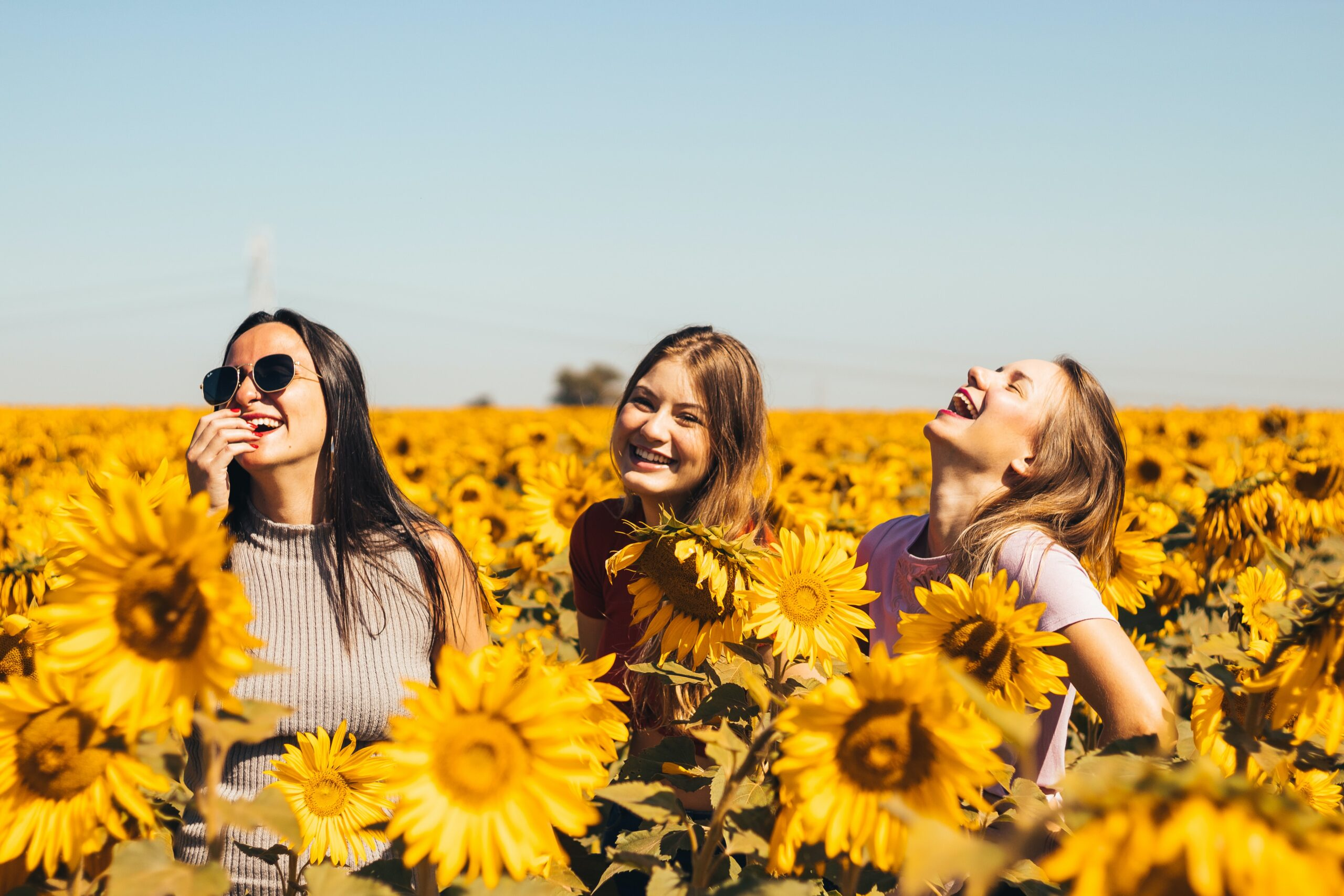 Friends with essential oil in sunflowers.